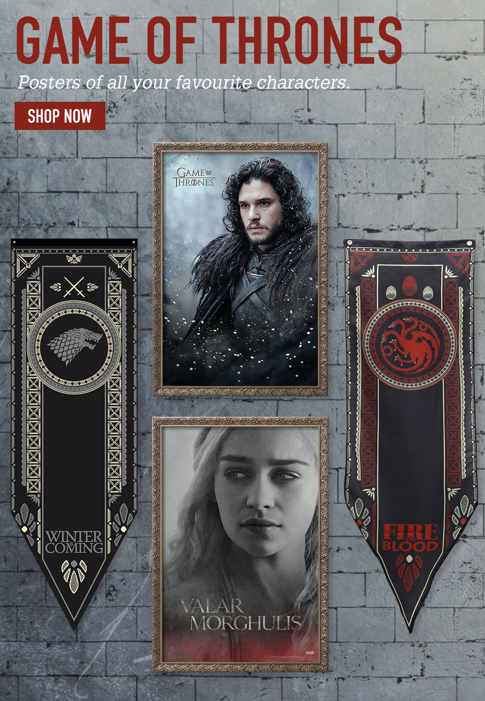 GAME OF THRONES. Posters of all your favourite characters. SHOP NOW