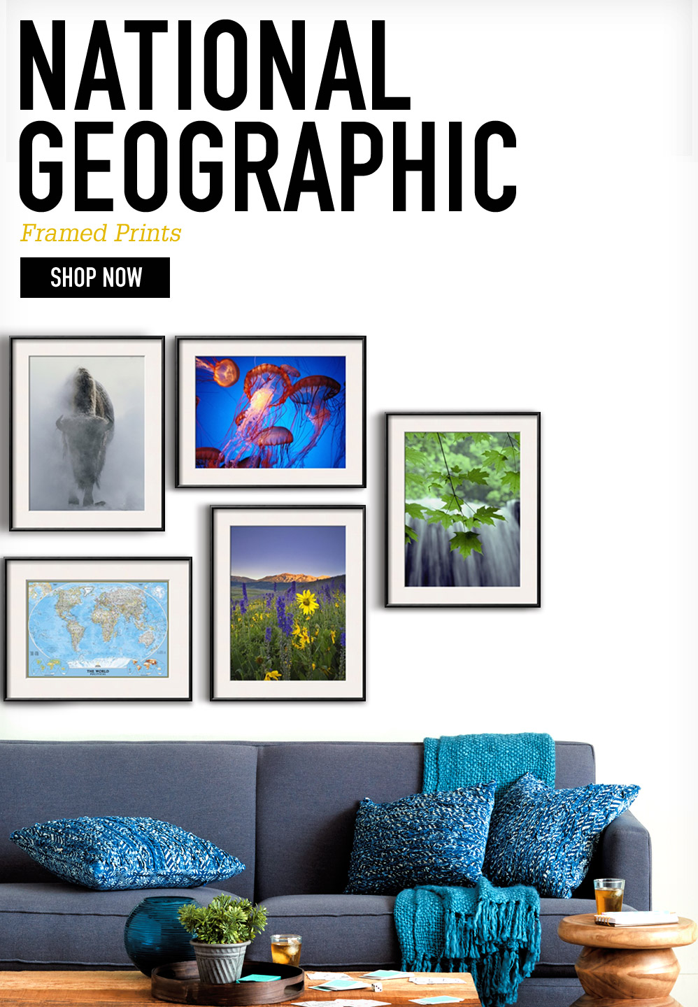 NATIONAL GEOGRAPHIC. Framed Prints. SHOP NOW